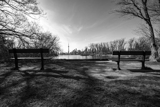 Zwei leere Parkbänke mit Blick von den Toronto Islands auf Down Town Toronto, Kanada. Mai 2015 // Two empty park benches the Toronto Islands in front of the skyline of Down Town Toronto , Toronto, Canada. May 2015