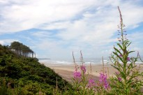 Beverly Beach State Park, Oregon