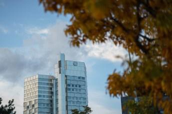 Sony A7 - SAMYANG AF 75mm F1.8 - 75 mm - ¹⁄₁₀₀₀ s - ƒ / 1,8 - ISO 100