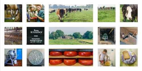 Workshop storytelling met fotografie photo review