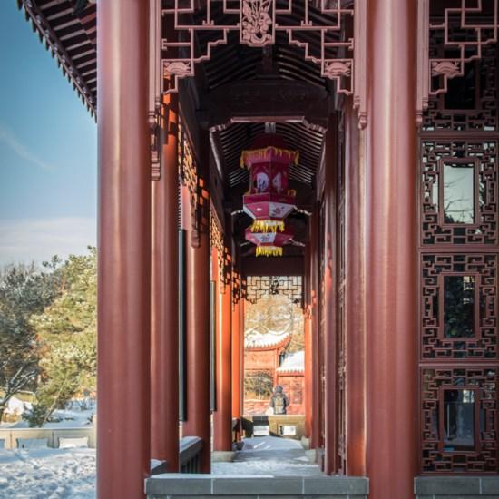 Jardin de Chine photowalk montréal
