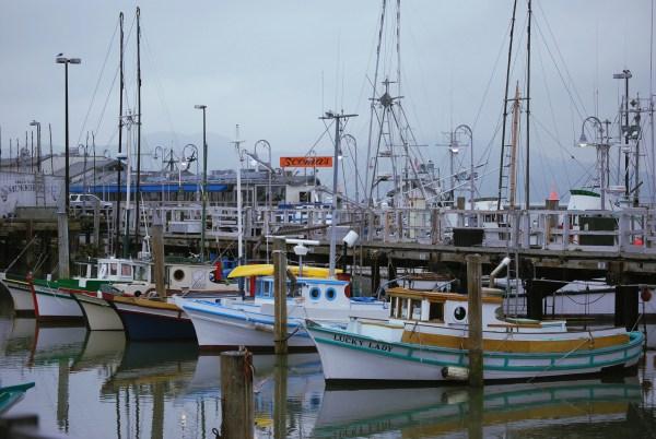 San Francisco Fisherman Wharf Ladies World