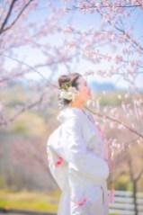 フォトウェディング 群馬県 桜 ロケーション