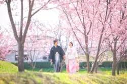 フォトウェディング 群馬 桜
