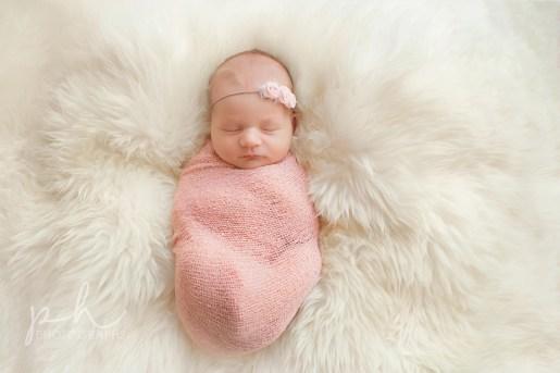 Regina Newborn Photographer148