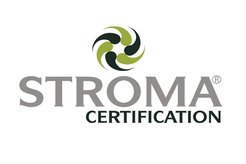 Stroma looks ahead with BIM Certification  PHPI Online