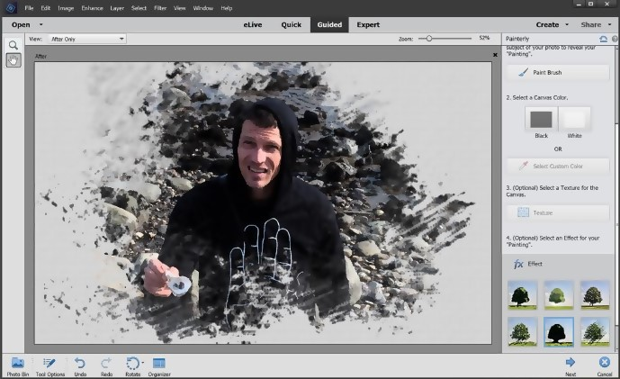 Painterly Pro Guided Edit