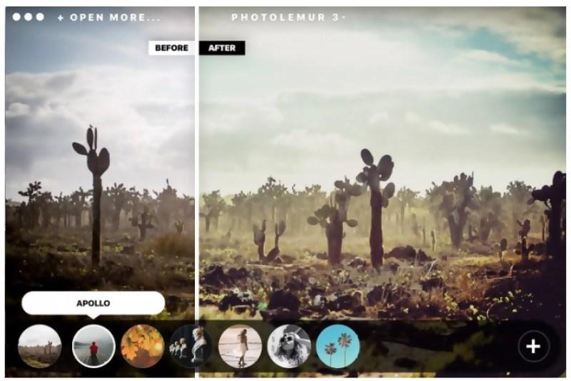 Photolemur New styles