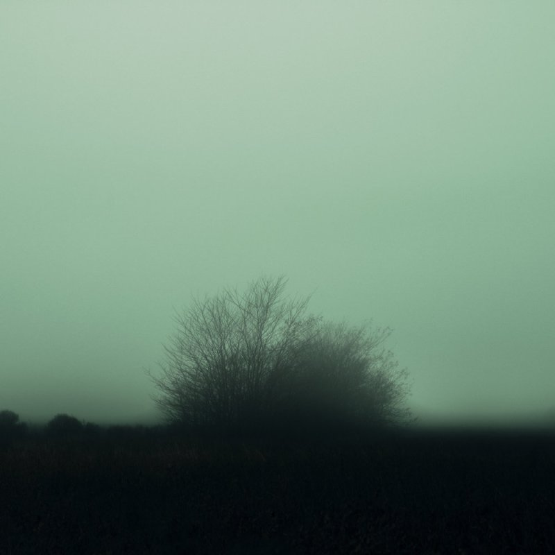 PHROOM magazine online exhibition space dedicated to contemporary fine art photography // projects