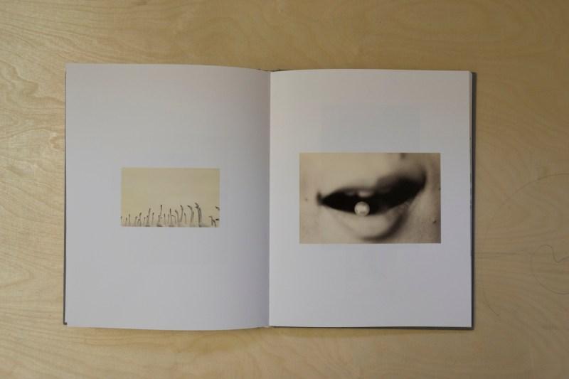 PHROOM magazine // yamamoto masao // international research platform for contemporary photography and video art