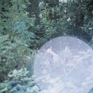PHROOM // the eyes, the ears – Rinko Kawauchi
