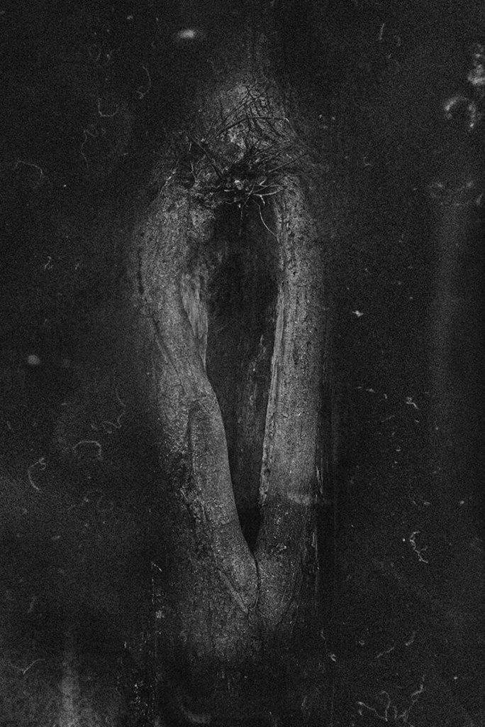 PHROOM // Dimitra Dede