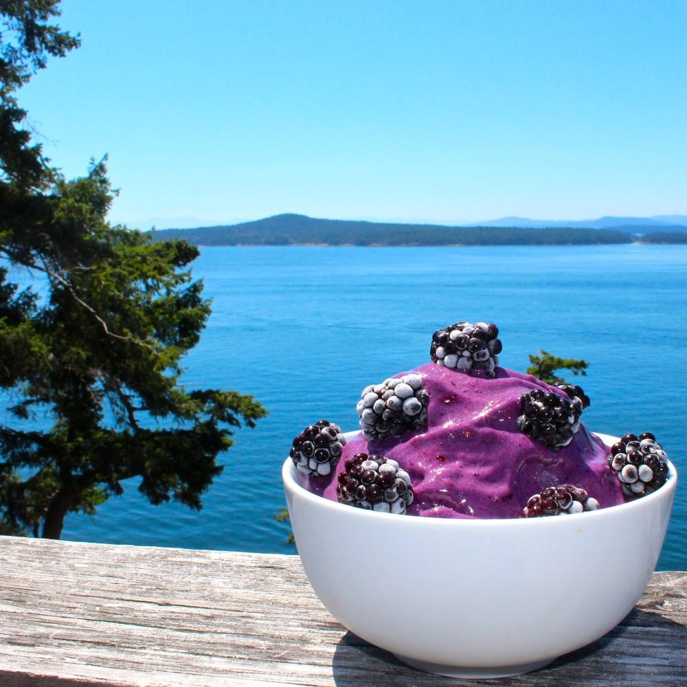Blackberry Protein Nice Cream - Vegan