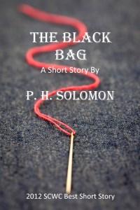 Black Bag Cover 7