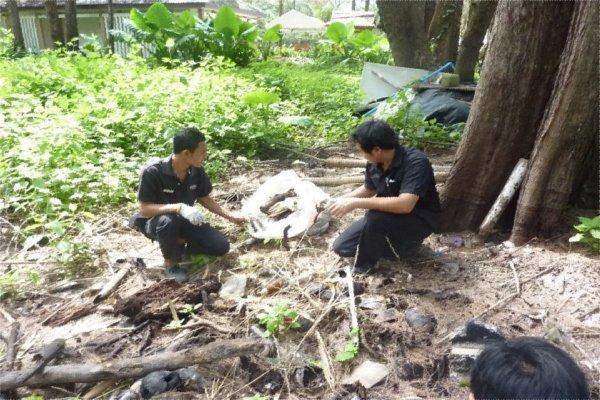 Phuket's Andara Resort's Beach Cleanup Recognised