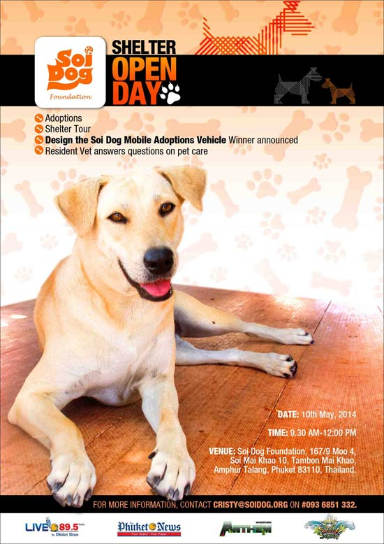Soi Dog Open Morning for Tours and Adoptions