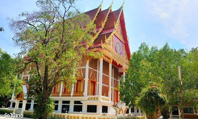 Photo of the day: Wat Mai Khao
