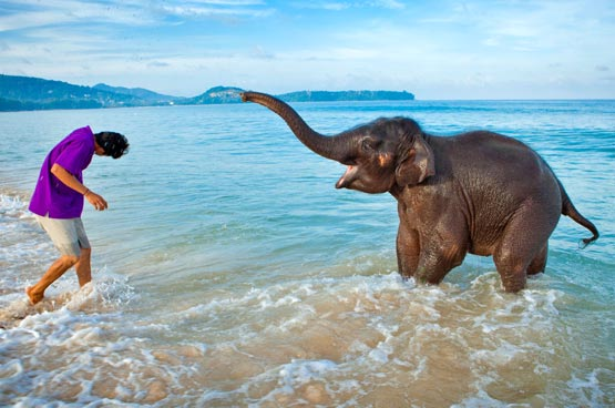 Thailand Show features summer specials at Laguna Phuket