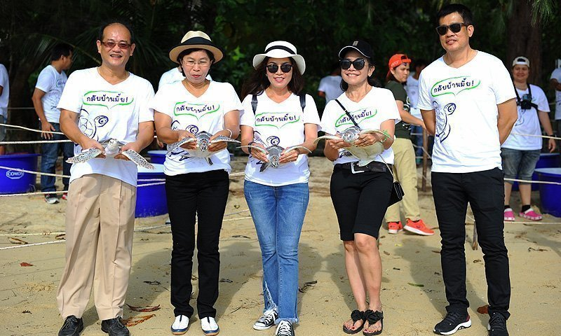 Laguna Phuket Launches Young Sea Turtles on Ocean Odysseys
