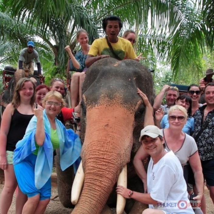 где покататься на слонах в краби