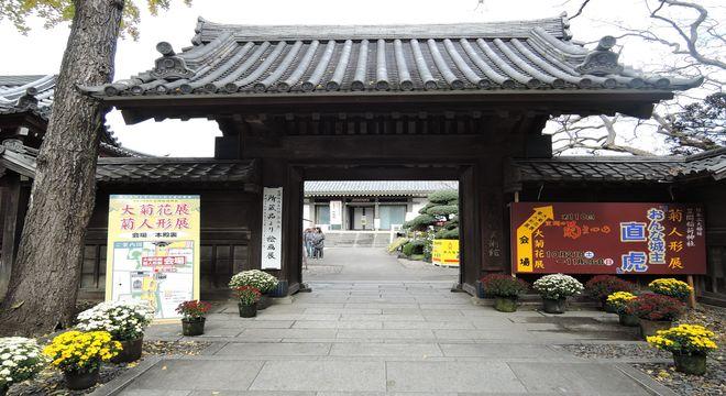 笠間稲荷神社菊まつり