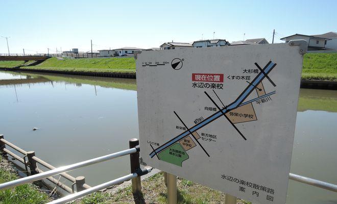 水辺の楽校(新方川)越谷市