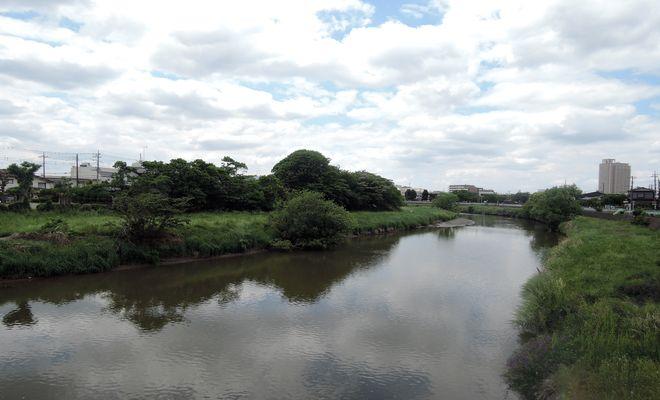 宮前橋から望む元荒川の風景