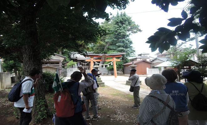 五社稲荷神社|境内