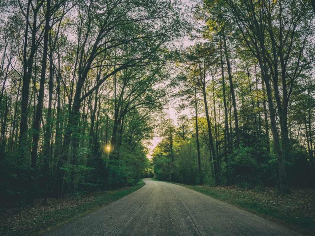 How to Set Grace Driven Goals