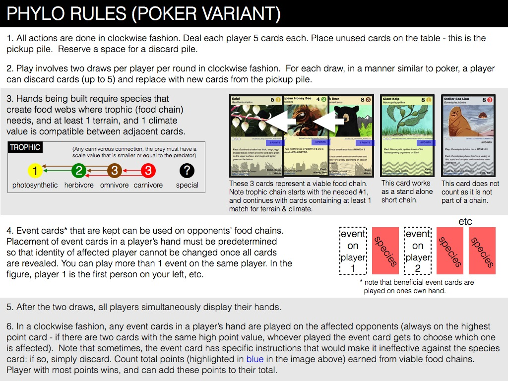 Poker first card off the deck rule