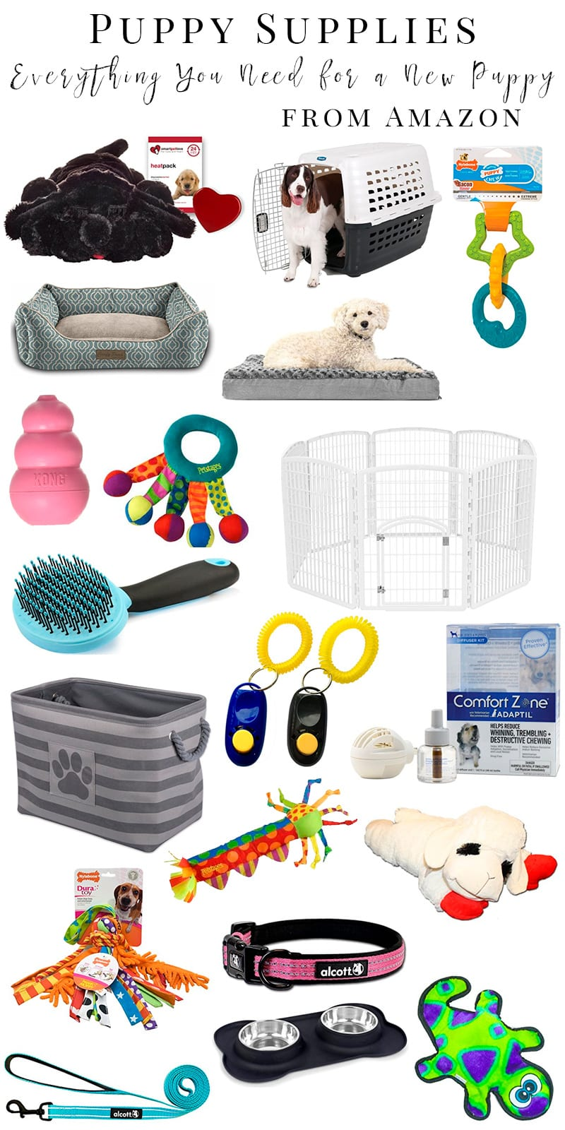 Puppy Supplies What You Need for a New Puppy Before They Arrive