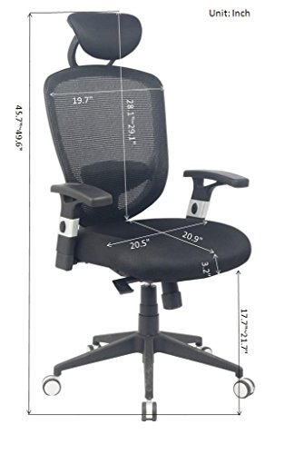 alera elusion chair booster baby physical therapy tips: choosing an ergonomic office