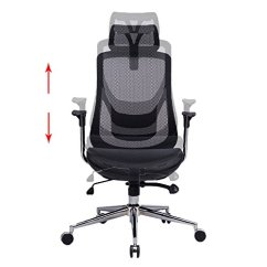 Balance Ball Office Chair Steel Rubwood Physical Therapy Tips: Choosing An Ergonomic
