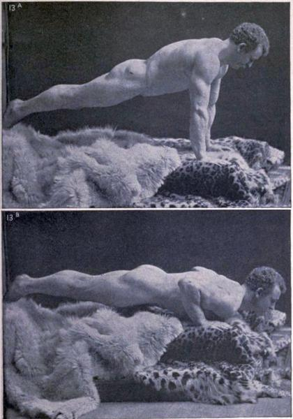 Sandow-Pushup_grande
