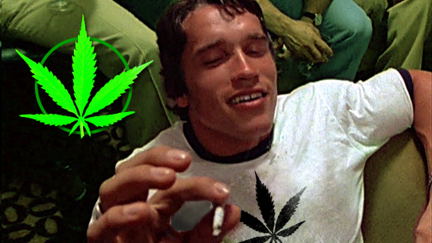 A-Lifters-Guide-to-Marijuana
