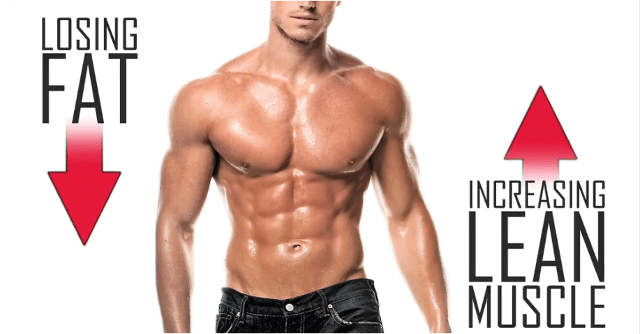 how+to+build+muscle+and+burn+fat+diet