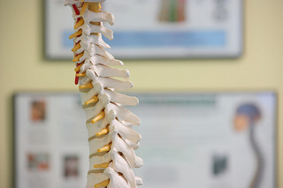 cervical-and-upper-thoracic-spine