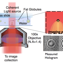 technical note characterizing individual milk fat globules with holographic video microscopy [ 1024 x 768 Pixel ]