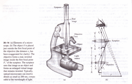 THE MICROSCOPE Physics Homework Help, Physics Assignments
