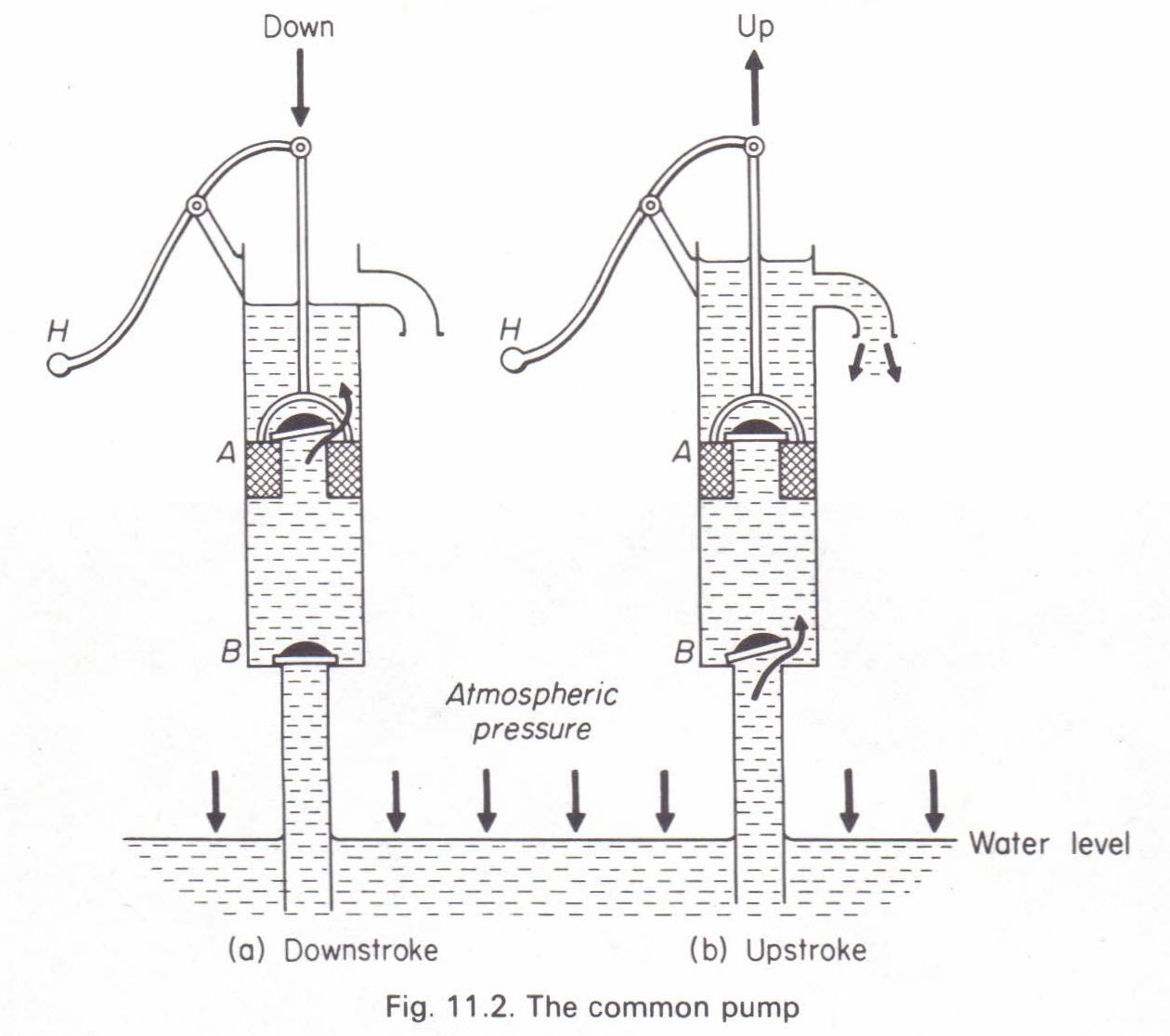 The common pump (lift pump) Physics Homework Help, Physics