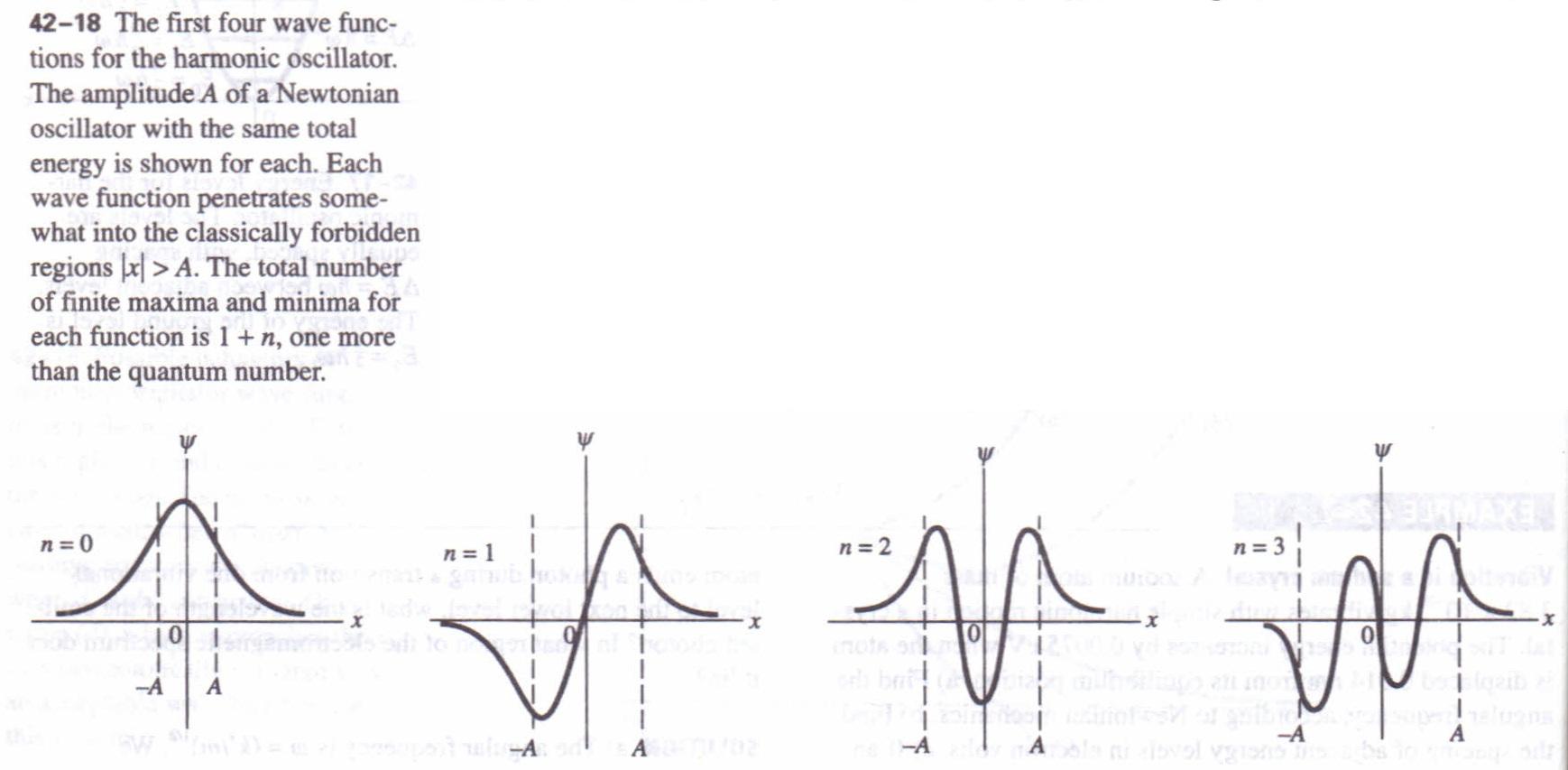Quantum And Newtonian Oscillators Physics Homework Help