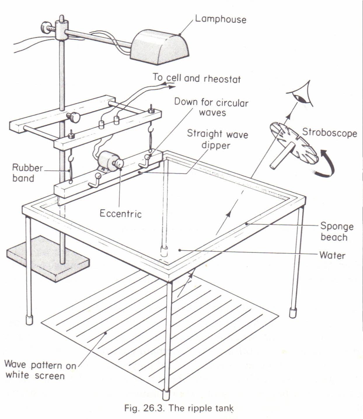 long and short sighted diagram ge top load washer wiring drawing lens diagrams imageresizertool com