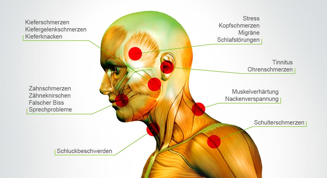 Typische CMD-Symptome