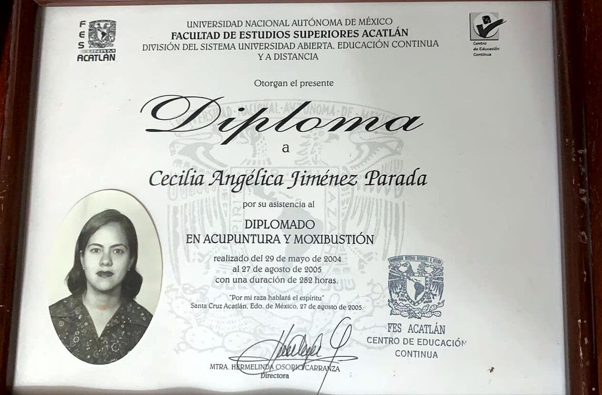 Diplomado Acupuntura y Moxibustión - Facultad de Estudios Superiores Acatlán