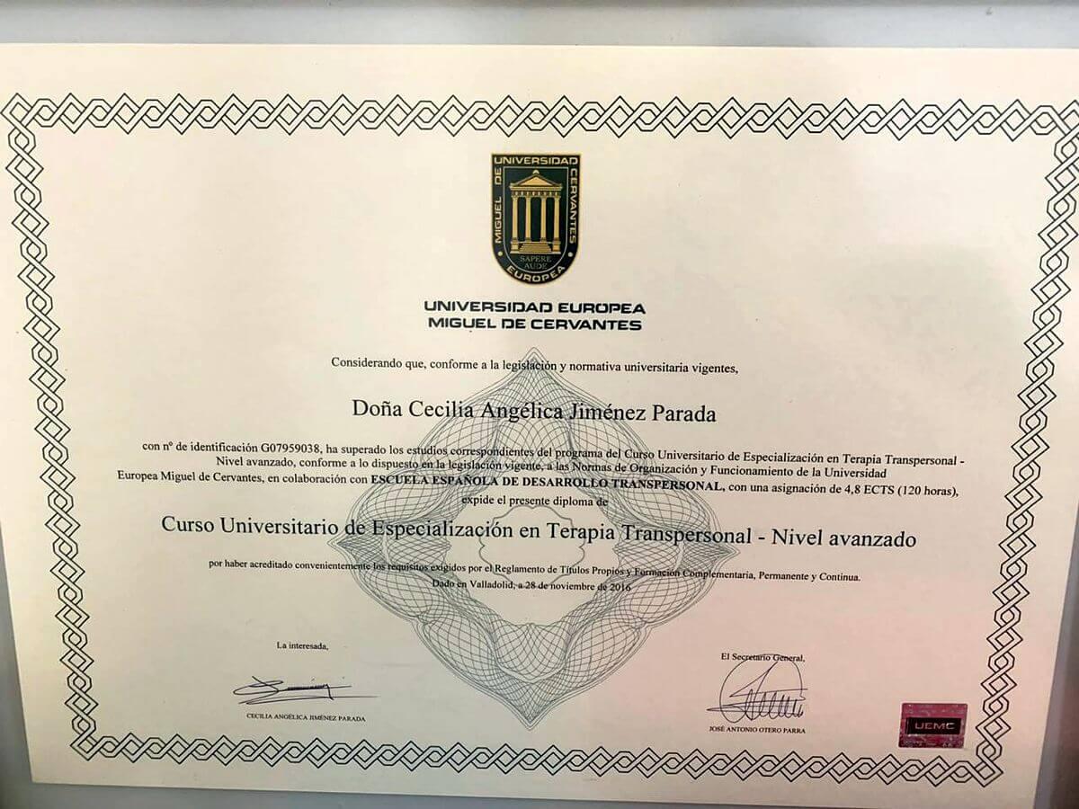 Curso Universitario de Especialización en Terapia Transpersonal - Universidad Europea Miguel de Cervantes