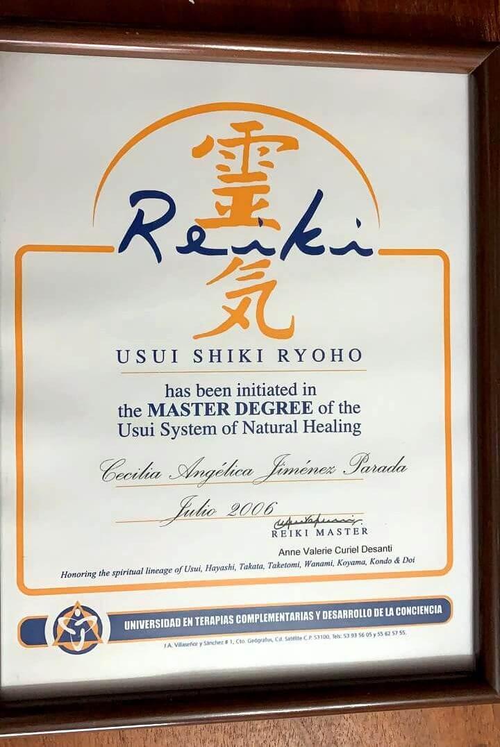 Maestría sistema de curación natural USUI