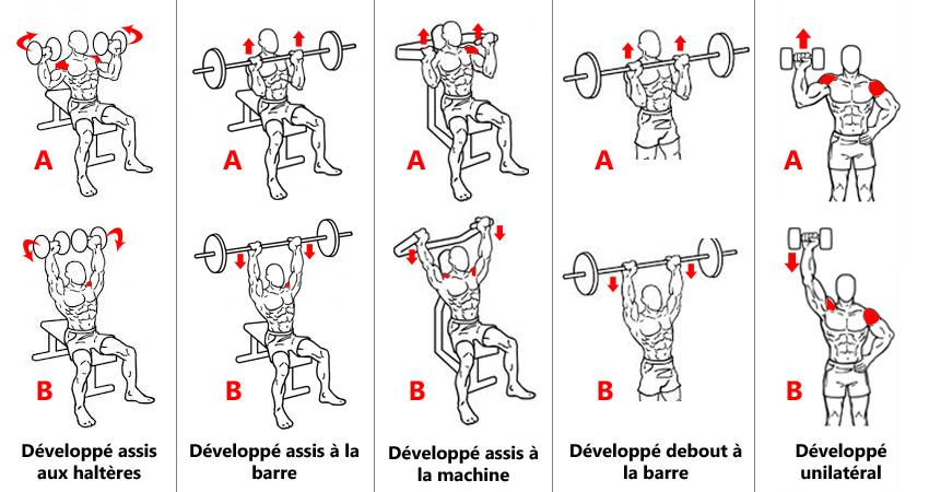 Exercices de base pour les épaules