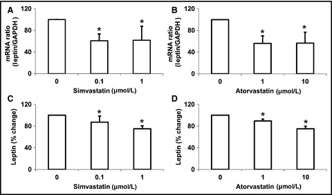 Statins decrease leptin expression in human white