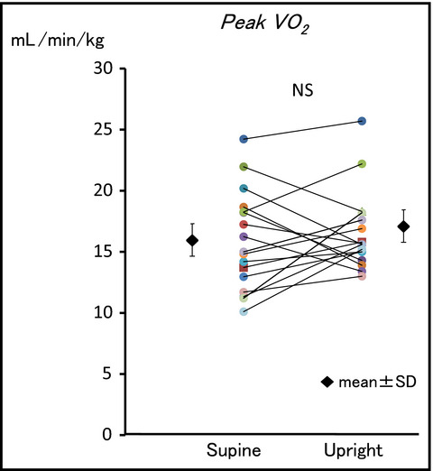 Effects of body position during cardiopulmonary exercise