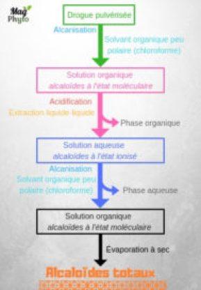 Principe d'extraction des alcaloïdes tropaniques